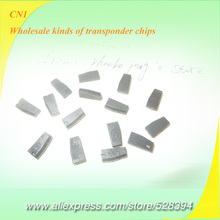 KEY CHIP Similar As TPX1 CN chip CN1 Cloner Transponder Chip 4C Copy By AD900 ND900 (Repeat Clone) 2pcs HKPAM Free Shipping