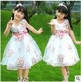 467-10Y nova chegada 2016 crianças roupas crianças do sexo feminino criança subiu expansão inferior de uma peça vestido da menina princesa véu arco vestido
