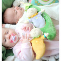 Hot Sale Frete Grátis Colorful Bicho de pelúcia Brinquedos de Pelúcia Travesseiro Forma Animal Brinquedos Do Bebê da Segurança Do Bebê Recém-nascido Home Decor AS29