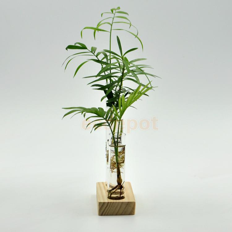 unids cilindro botella florero de vidrio flor hidropnico pant base de madera