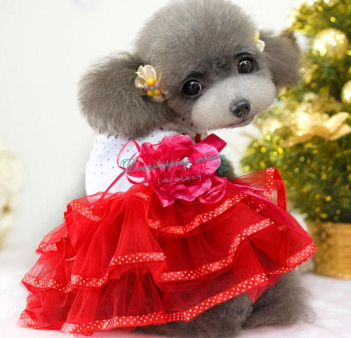 Summer Pet Apparel Wedding Dress Teddy Princess Rose Flower Tutu ...