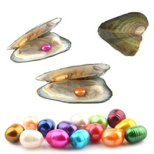 Natural Pearl Freshwater Cultured Pearl Oyster with 7-8 mm Oval 14 Color Pearl DIY Birthday Gifts Vacuum-Packed 10 pcs lot pearl shell freshwater cultured love wish pearl oyster with 8 8 5 mm round pearls random color