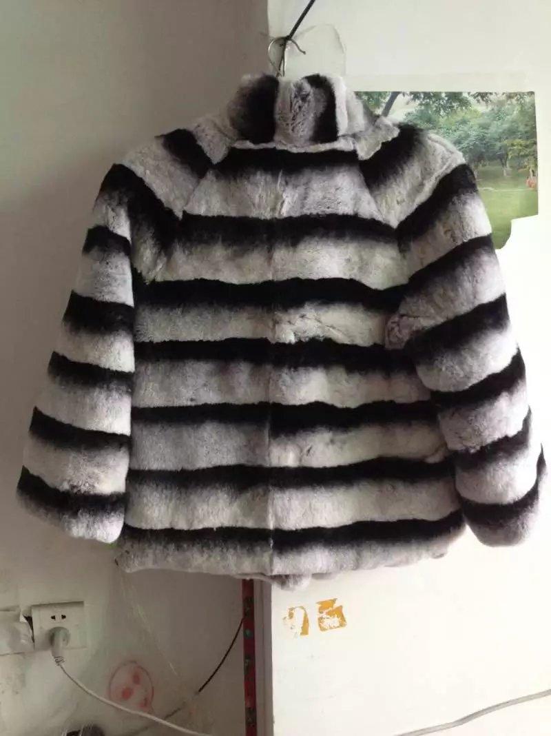 Կարճ ոճ Բնական Chinchilla Rex նապաստակի - Կանացի հագուստ - Լուսանկար 6