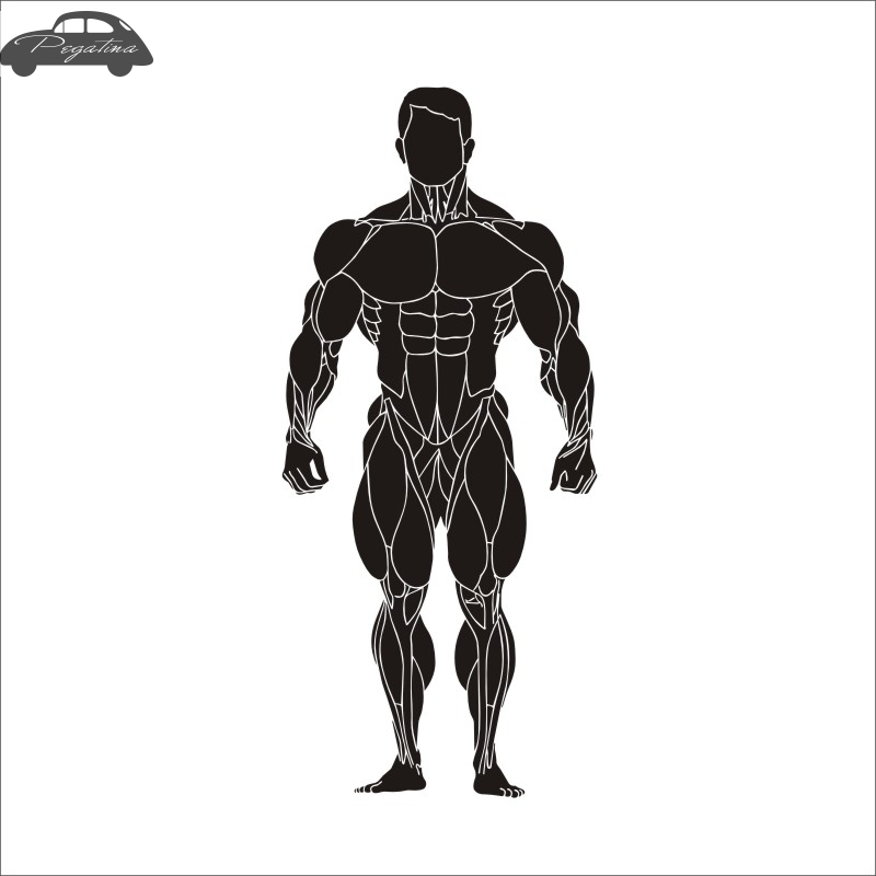 Pegatina Car Gym Sticker Fitness Decal Body-building Posters Vinyl Wall Decals Quadro Parede Decor Mural Gym Sticker
