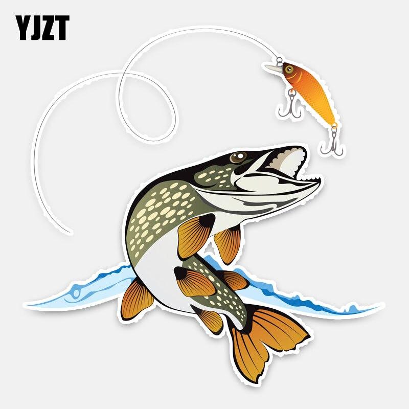 YJZT 15CM*15CM Interesting Animal Fish Car Styling Car Sticker PVC Decal Decoration 5-0210