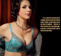 Free shipping Chinese wind come sexy lingerie bra
