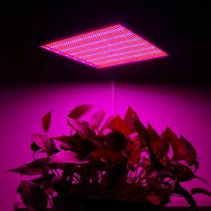 Image 5 - 20 واط 30 واط 120 واط 200 واط LED تنمو ضوء الطيف الكامل الأحمر + الأزرق النبات Phytolamp LED مصباح للنباتات حوض السمك الزهور الزراعة المائية النباتية