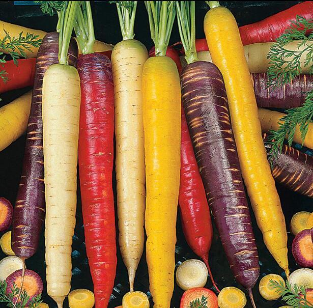500 piezas de zanahoria, Daucus carota, buen gusto, patio o maceta de verduras de fruta bonsai planta hogar jardín envío gratis