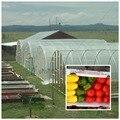 16 praça 4 m x 4 m de espessura 6 s espessamento legumes de plástico filme de efeito estufa Mulch uso para agricultura