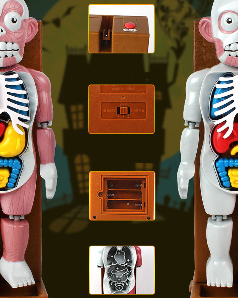 Funny Simulation Human Organs 3D Puzzles Assembled Scary Human Body Model Halloween Tricky Joke Toy Novelty & Gag Toys 4
