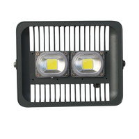 100W White Warm White 85 265V LED Outdoor Floodlight Waterproof For Court Yard