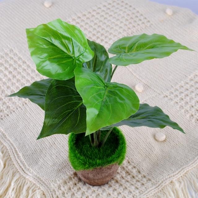 Us 246 1 Pc Moss Zielony Sadzenia Trawy Craft Dekoracje Doniczki Kosz Kwiatów Kwiat Wiadro Wazon W 1 Pc Moss Zielony Sadzenia Trawy Craft