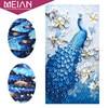 Meian Special Shaped Diamond Embroidery Animal Peacock Full Rhinestone 5D DIY Diamond Painting Cross Stitch Diamond