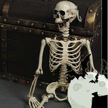 Гибкая медицинская анатомическая Анатомия человека медицинская модель скелета обучающая помощь Анатомия художественный эскиз 14 см