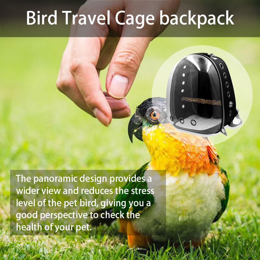 New Parrot Outing Backpack Breathable Transparent Space Capsule Travel Cage  Fashion Pet Backpack Pet Supplies High Quality