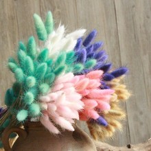 30Pcs/lot Natural Rabbit Tail Grass Dried Flower Decoration Festive Party Supplies Flowers Colorful Wedding Decor Bouquet