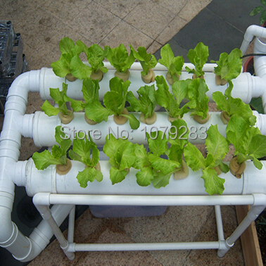 Horizontal 3 main tube with 21pcs of net cup Hydroponics system NFT