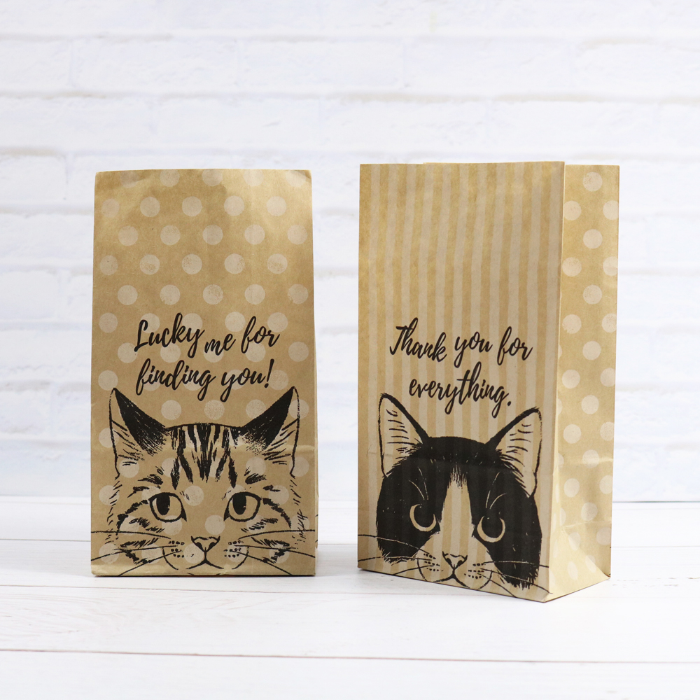 Kraft Paper Bags 6pcs Cat Dots Stripes Design Paper Envelopes Stand Up Portable Bag Storage Packing Pouches For Kid Book Storage