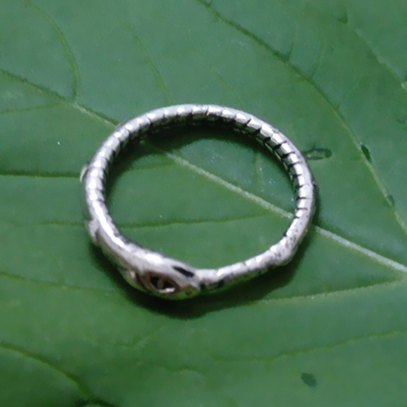 Drop shipping Retail Ouroboros ring Charming ancient silver ring restoring ancient ways Christmas gifts
