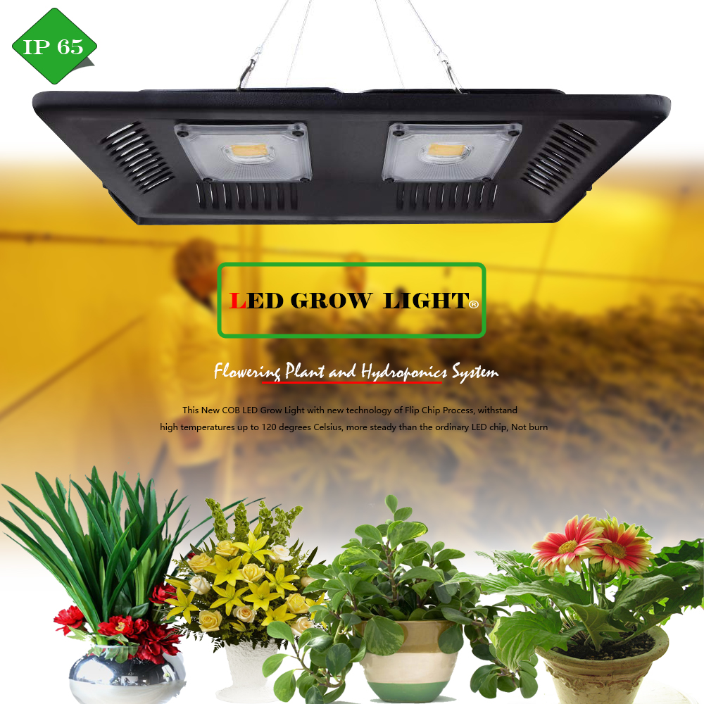 Phyto Lamp 50W 100W 150W LED Grow Light COB Full Spectrum IP67 Waterproof Warm White Grow LED For Grow Tent Plants Growing
