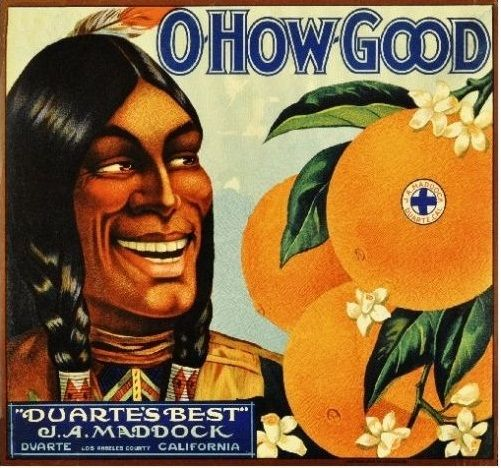 Art Indian Orange Fruit Vintage Food Advertising Poster Classic Kraft Posters Canvas Bathroom Wall Sticker Home Decor image