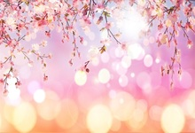 Laeacco Dreamy Spring Pink Flower Sprout Polka Dot Light Bokeh Party Baby Photo Backgrounds Photography Backdrops Studio