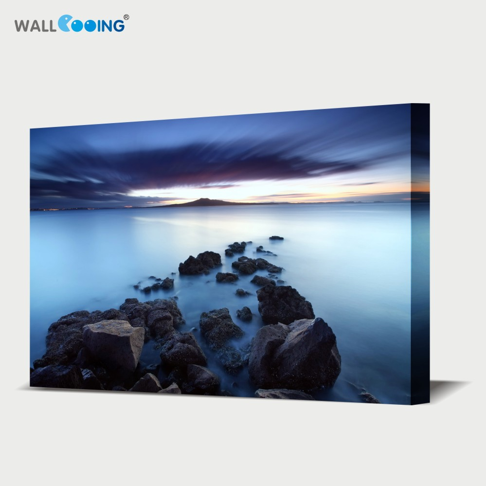 Home Decor Canvas Art Waterproof High Definition Picture