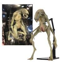 Original NECA Aliens Vs Predator Figure Alien Resurrection Delune Newborn Action Figure Toy Doll Gift