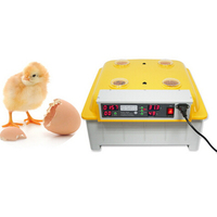 1pc 48 Eggs Digital Clear Egg Incubator Hatcher Automatic Turning Temperature Control