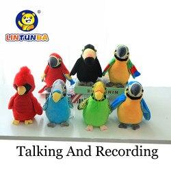 Eletrônico falando papagaio brinquedos de pelúcia bonito falando e gravação repetições acenando asas pássaro elétrico recheado brinquedo de pelúcia crianças brinquedo