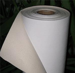 Free shipping 380gsm 8m long sample cotton inkjet canvas for digital printing
