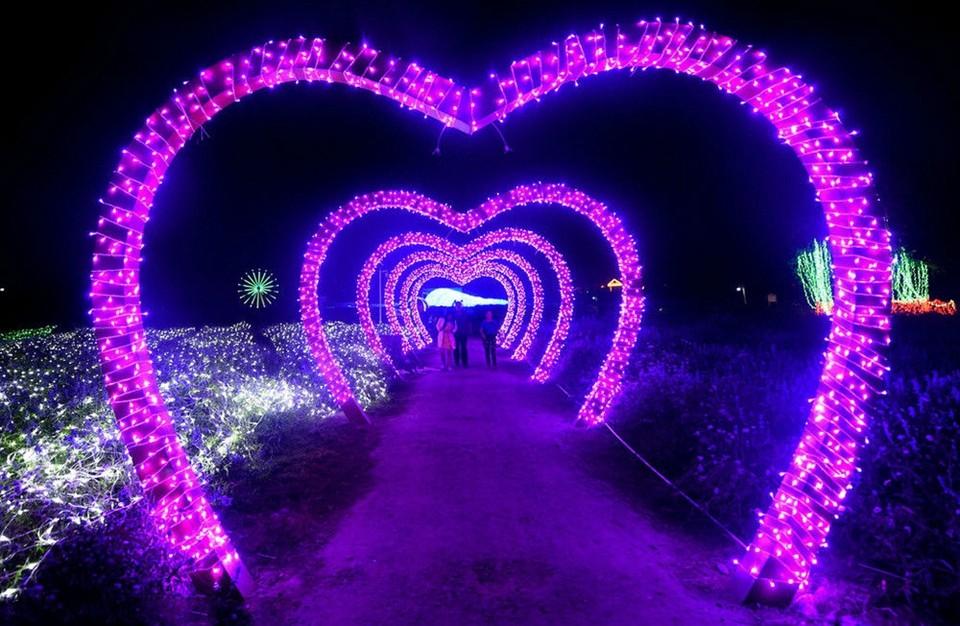 Lighting Strings wedding christmas lights led strings 10m AC220V 110V Led Strip Light Garden Garland  (11)