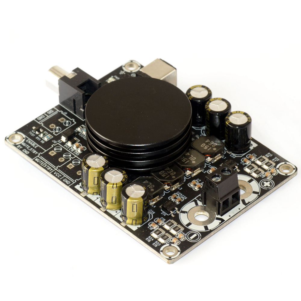Class D digital audio amplifier board TPA3116 HIFI 100W Monaural amplifier with subwoofer aiyima tpa3116 4 1 bluetooth amplifiers audio board digital class d amplifier 4 50w 100w amplificador audio 24v car subwoofer