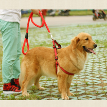 Dog Leashes Collar Perro Grande Pet Dog Leashes Set Prros Chien Hond Harness Correas De Perro Accesorios Honden Leiband QQM237