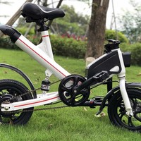 Speed 350W 36V Li ion Battery Assistant cycle, Electric Bike for Lovely Lady , Electric Bicycle, Mini E Bike