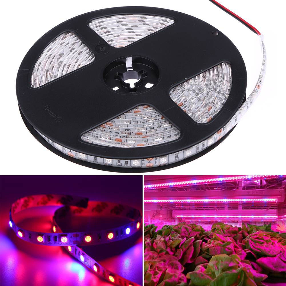 5M 5050 300LED Strip Grow Light Spectrum Tank Indoor Hydroponic Plant Lamp