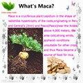 25g Melhor Maca Root fatia chá de ervas melhorar a Experiência Sexual aumentar a energia para o homem/mulheres Chinês Viagra Natural frete grátis
