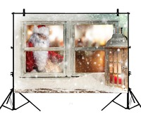5x7ft Christmas Xmas Snowflake Window Lantern Santa Claus Polyester Photo Background Portrait Backdrop