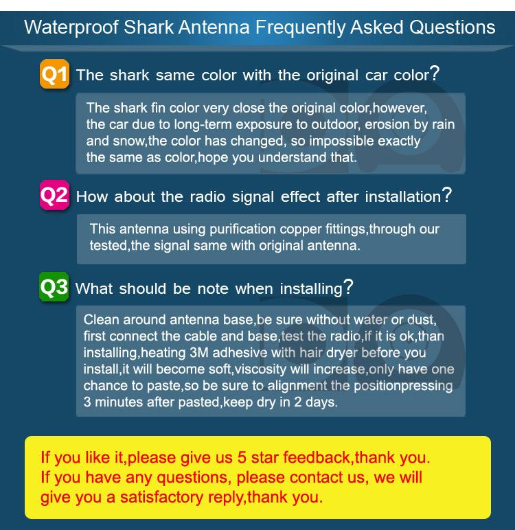 FAQ-WP-english_02