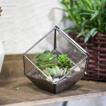 10cm Inclined Cube Glass Terrarium Box DIY Black Geometric Succulent Plant Flower Planter Pot Clear Glass