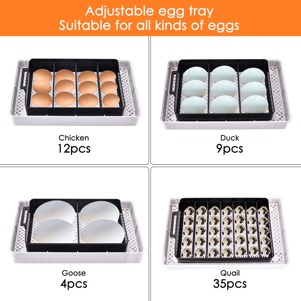 12 яиц автоматический цифровой инкубатор для яиц Домашний Мини инкубационный инкубатор курица утка инкубатор инкубационная машина - 6