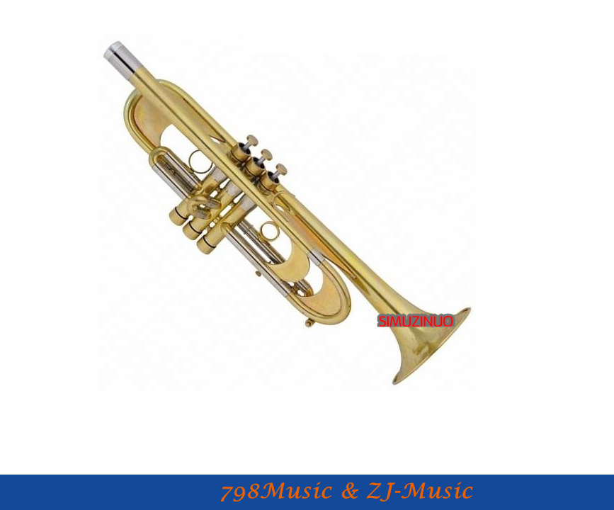 Professional Heavy Trumpet Germany Brass Custom Series Bb Horn With Case