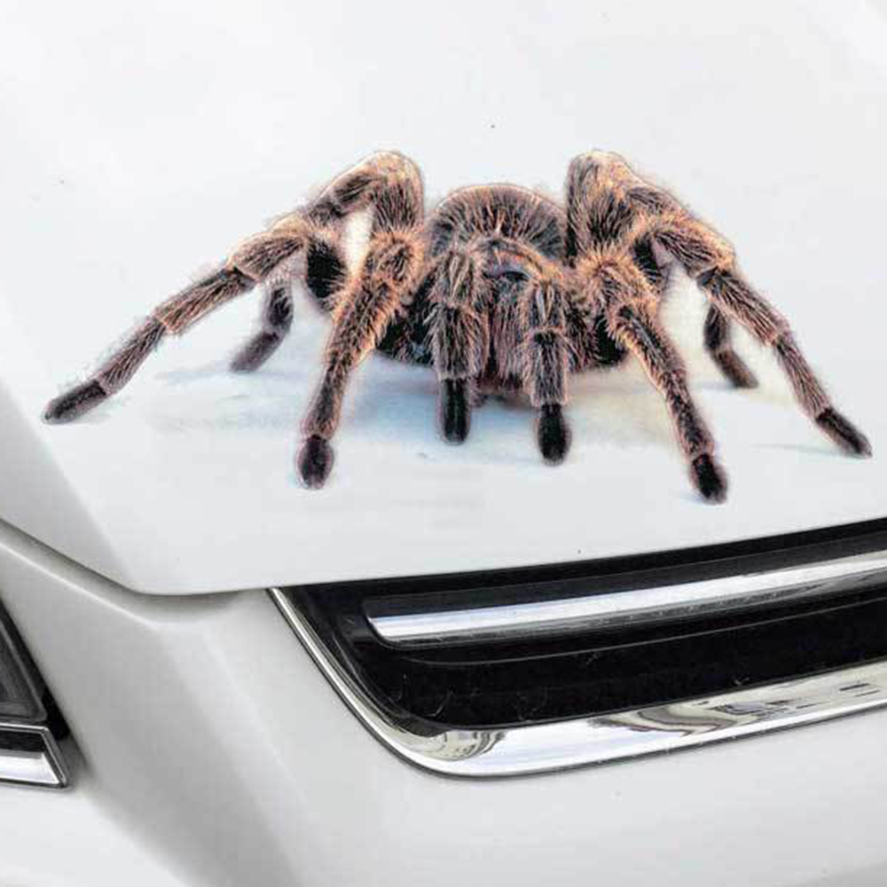3D Spider Car Stickers And Decal Animals Vivid Scorpion Lizard Funny Stickers On Auto Stripe DIY Car Styling Sticker Accessories