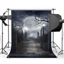 Fondo de fotografía sin costuras Halloween Horror noche misteriosa Luna puerta escena recién nacido fondo