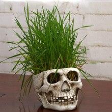 Creative skull resin pots juice modern design home decor for succulents potted