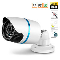 Ultra Low Illumination 1/2.9'' AHDH 1080P AHD Camera CCTV IR Cut Filter Camera AHD 1080P Outdoor /Indoor HD Waterproof Camera
