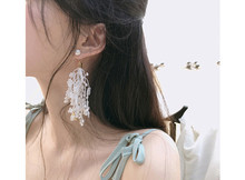 Elegant elegant lace tassel earrings Korean fashion long temperament female personality