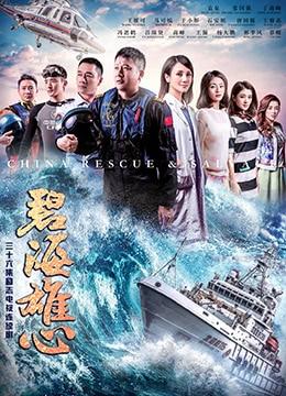 《碧海雄心》2017年中国大陆剧情,冒险电视剧在线观看