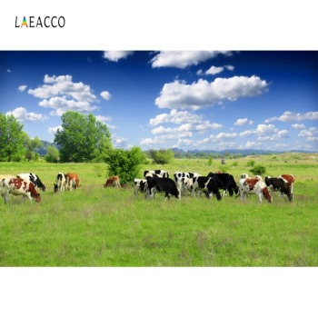 Laeacco Photo Backgrounds Farm Green Grassland Cow Blue Sky Cloudy Scenic Photography Backdrops Photocall Studio