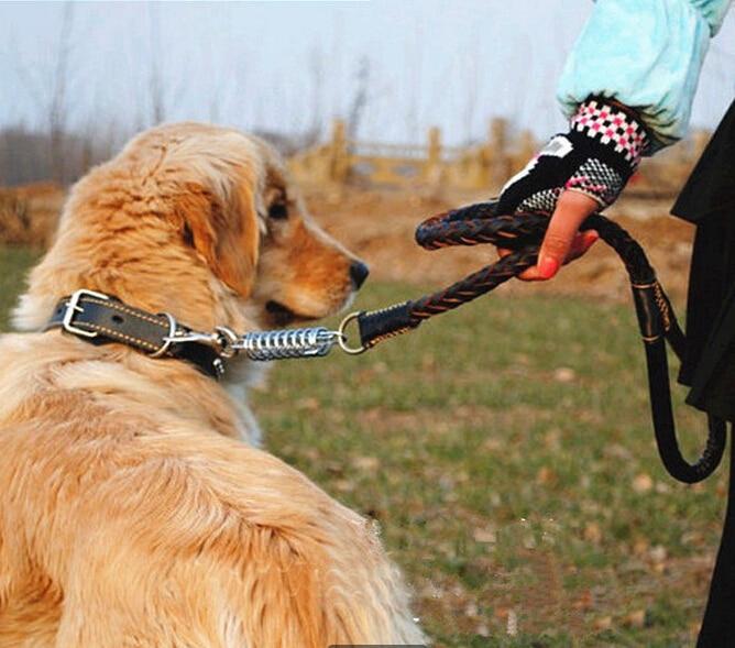 100 Genuine Leather Pet Collar Leash